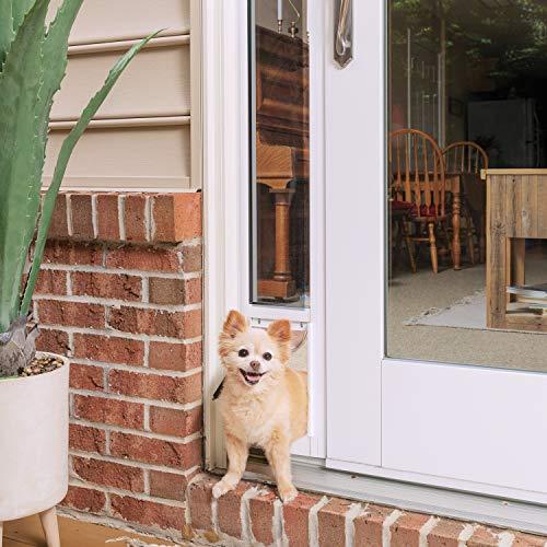 PetSafe Inserto de Cristal Deslizante para Puerta de Gato y Perro, Ideal para Alquiler y Apartamentos, sin Cortar instalación de Bricolaje - (pequeño)