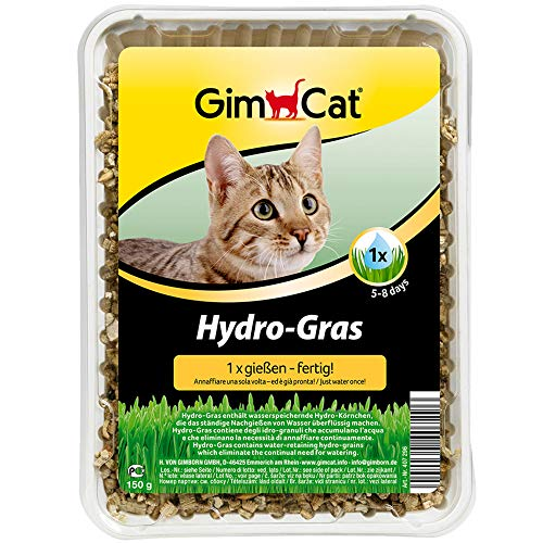 GimCat Hydro-Gras - Hierba fresca para gatos, de plantación controlada, en tan solo de 5 a 8 días - 1 bandeja (1 x 150 g)
