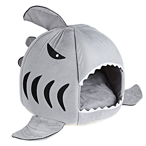 Casa con forma de tiburón