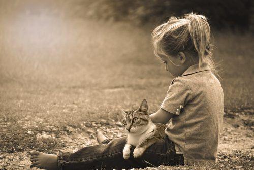 Gatos y niños pequeños