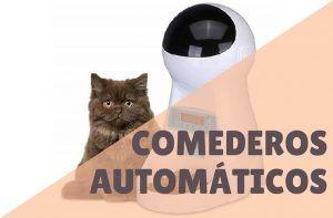 Comederos automáticos para gatos