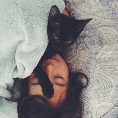 Tu gato te despierta por la noche