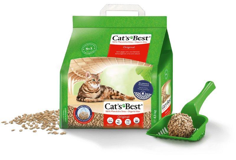 Cats-Best-Original-Mejor-Arena
