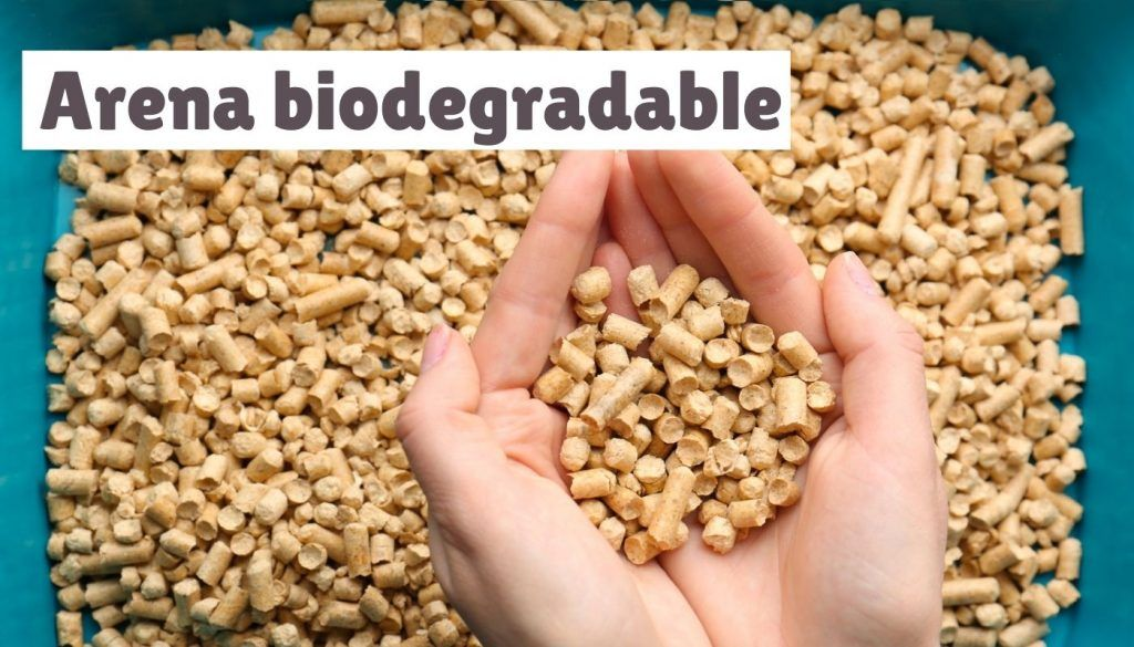 arena biodegradable